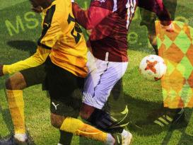 Abteilung: Fußball
